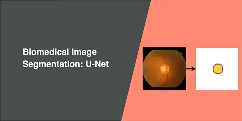 U-Net works with very few training images and yields more precise segmentation